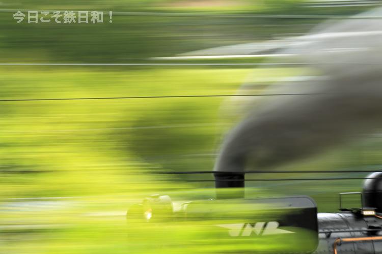 _MG17085.jpg