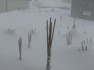 また大雪2