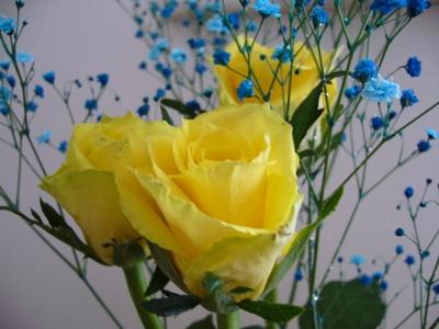 カスミ草とバラ2