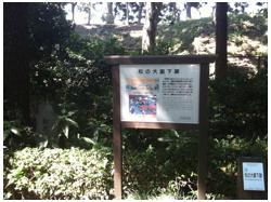 東京220829_09