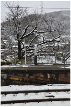 雪景色230211_05