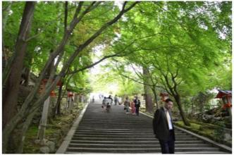 京都230505_08
