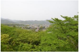 京都230505_13