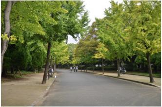 大阪城公園231106_03