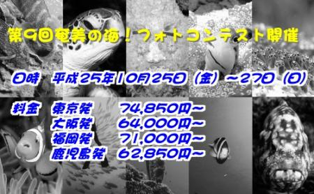 phot9.jpg