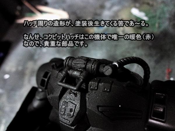 DSC00870.jpg