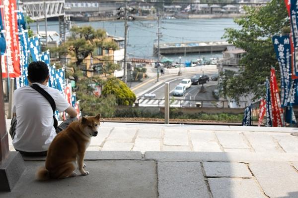 sd15-50-150-417-50 -尾道宮島5月4日5日-320SDIM3587_R