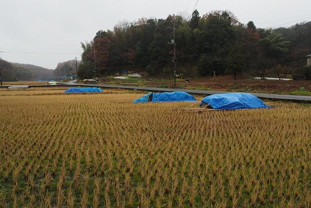 黒川001