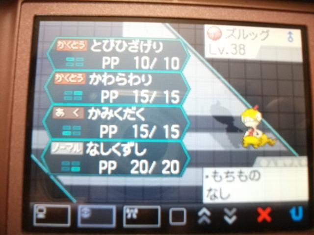 2011_03190003.jpg