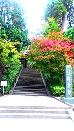 円覚寺H25秋