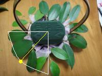 DSC00500_convert_20110501205917-2.jpg
