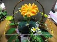 DSC00503_convert_20110501210105-2.jpg
