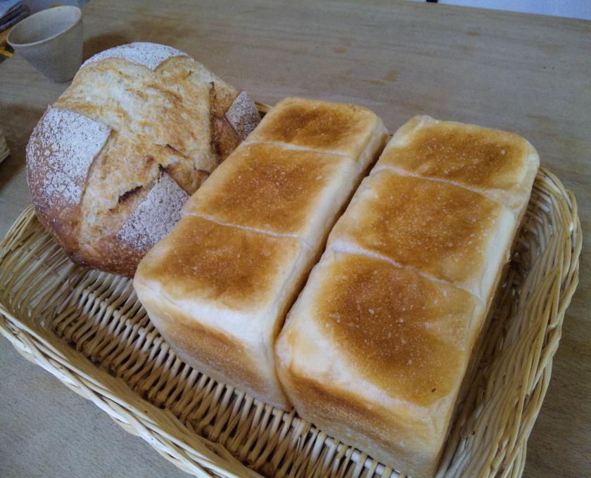 南部小麦の角食と苺酵母カンパーニュ
