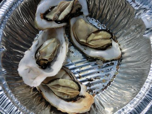 牡蠣祭り③
