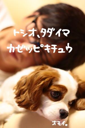 IMG_8391.jpg