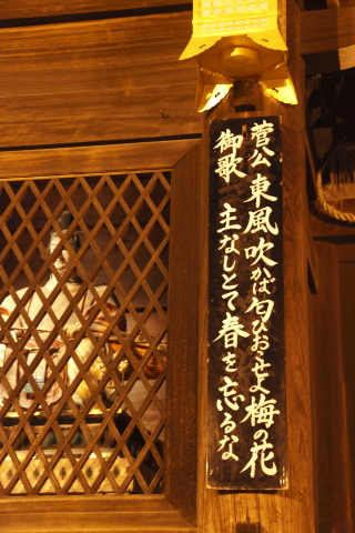 kochifukaba.jpg