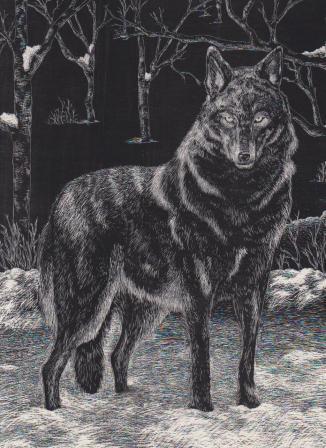 森オオカミ
