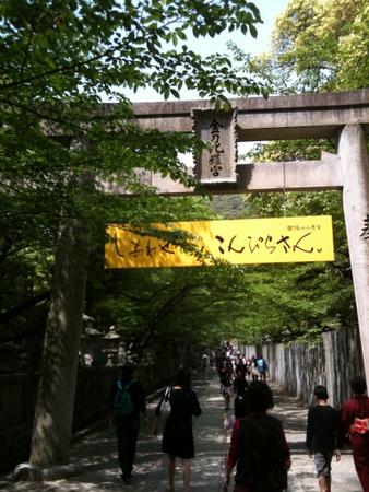 20110505-002.jpg