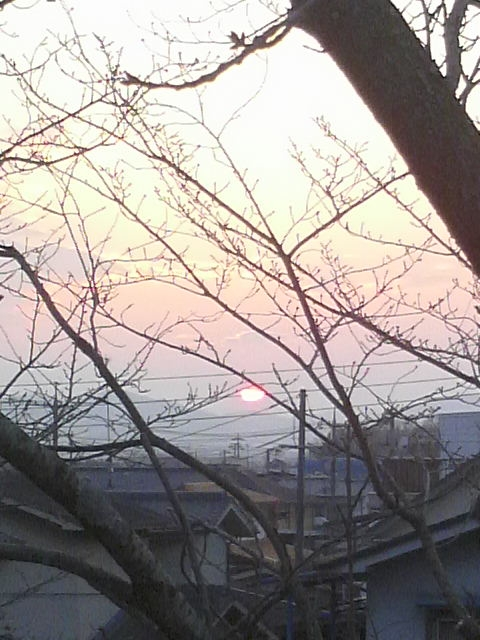 2011122916520000太陽
