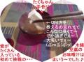 たくちゃん作お味噌汁