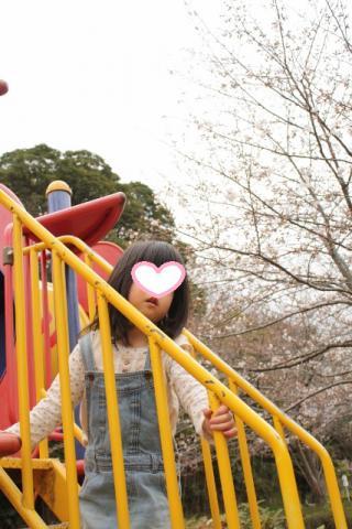⑫桜とcoco