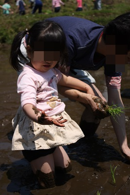 田植え 泥ついちゃった