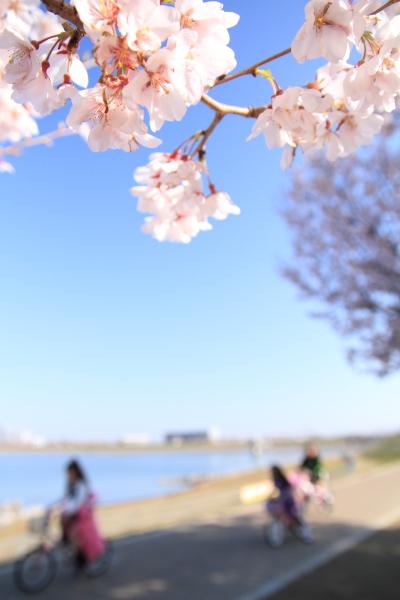 2012_0408_2_7.jpg