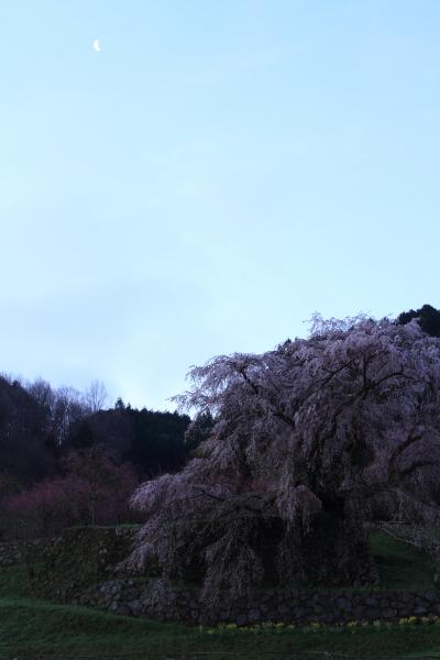 2012_0415_1_10.jpg
