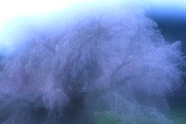 2012_0415_1_33.jpg