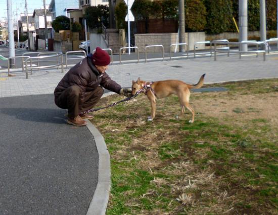 おさんぽ5_convert_20131224144408
