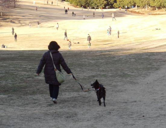 公園1_convert_20140121121621