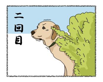 羊の国のラブラドール絵日記シニア!!「●●●の神様」4コマ2