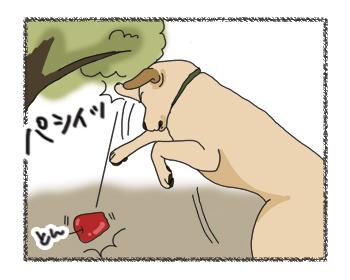 羊の国のラブラドール絵日記シニア!!「アップル・ピッカー」4コマ3