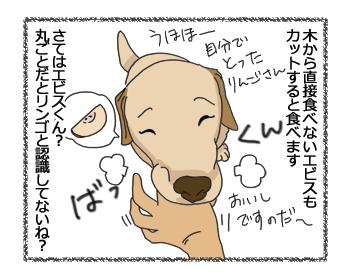 羊の国のラブラドール絵日記シニア!!「どうなの!?」4コマ1