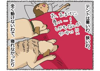 羊の国のラブラドール絵日記シニア!!「キャンプって・・・」4コマ3