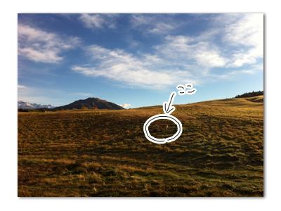 羊の国のラブラドール絵日記シニア!!「なだめの二時間」写真1