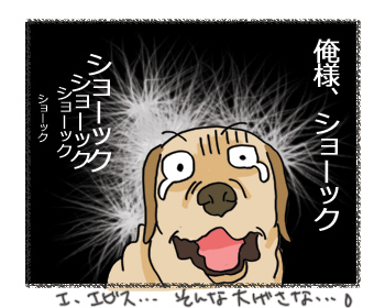 羊の国のラブラドール絵日記シニア!!ドンマイ!エビちゃん!3