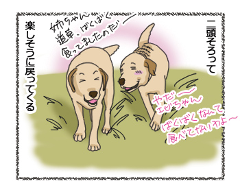 羊の国のラブラドール絵日記シニア!!「しあわせの野原」4コマ3