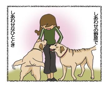 羊の国のラブラドール絵日記シニア!!「しあわせの野原」4コマ4