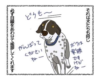羊の国のラブラドール絵日記シニア!!「ジョギングの楽しみ」3