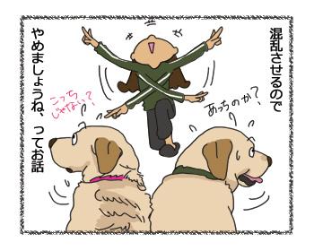 羊の国のラブラドール絵日記シニア!!「注意事項」4コマ4