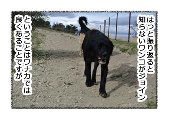 羊の国のラブラドール絵日記シニア!!「ペットかも~」4コマ漫画1