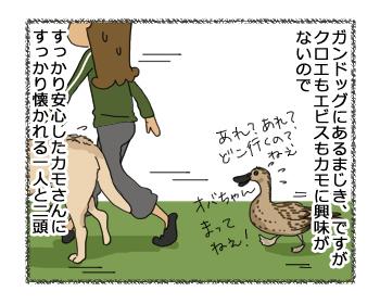 羊の国のラブラドール絵日記シニア!!「ペットかも~」4コマ漫画3