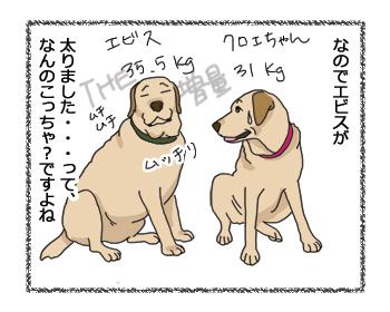 羊の国のラブラドール絵日記シニア!!「夏太りのワケ」2