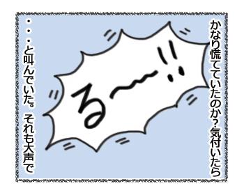 羊の国のラブラドール絵日記シニア!!「結果オーライ」4コマ3