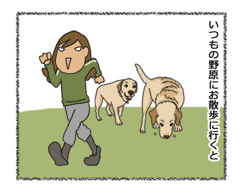 羊の国のラブラドール絵日記シニア!!「夢と現実」4コマ1