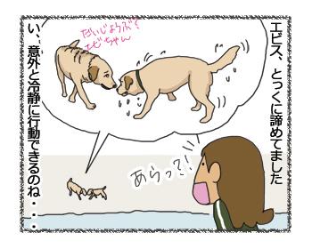 羊の国のラブラドール絵日記シニア!!4コマ漫画「引きどき」4