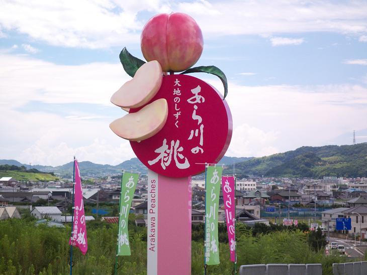 2010.08.08・『 桃 』和歌山県あら川の桃 2
