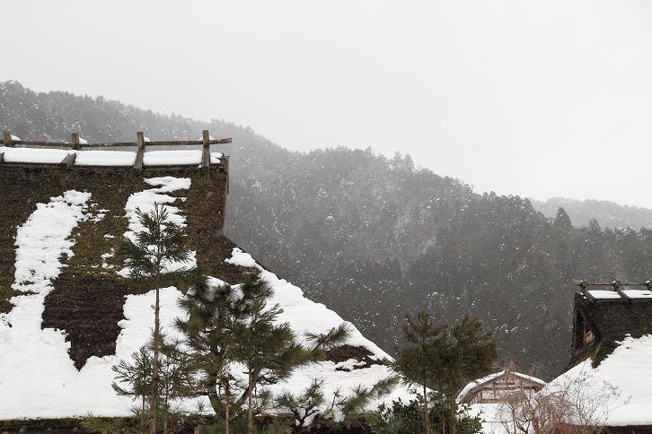 2011.01.14・『 美山 かやぶきの里・前編 』 京都 07