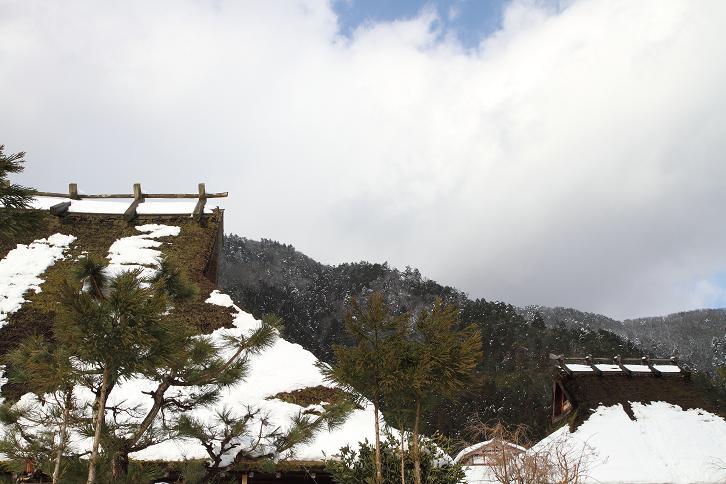 2011.01.14・『 美山 かやぶきの里・後編 』 京都 02